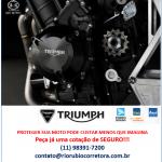 seguro-moto-triumph-2